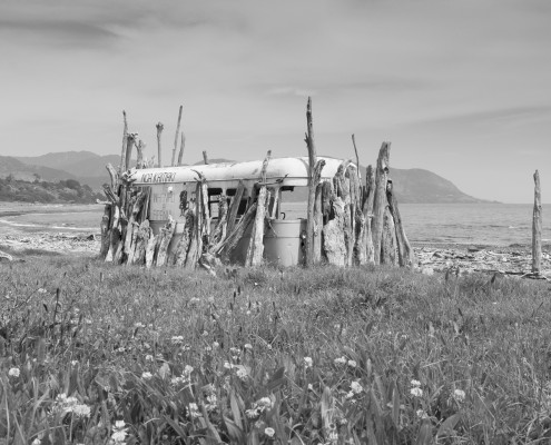 "Te Whānau Apanui // ""Community"" Exhibition / DEPOT ARTSPACE"
