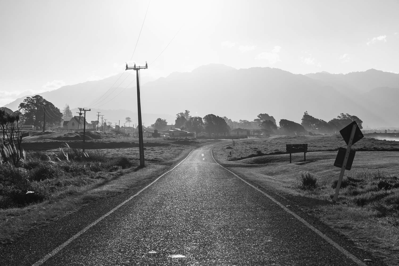 "Te Araroa looking West // ""Up The Coast"" Exhibition / DEPOT ARTSPACE"