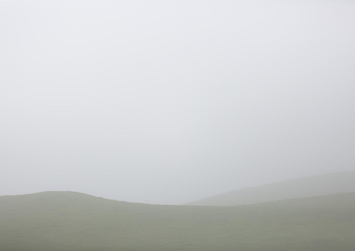 WHAINGAROA FOG by Jonny DAVIS